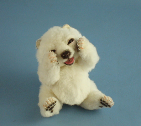 Teacup polar bear - photo#9