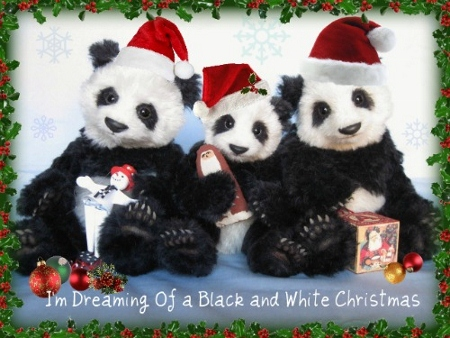 desertmtn-panda-jpg-450x338.jpg