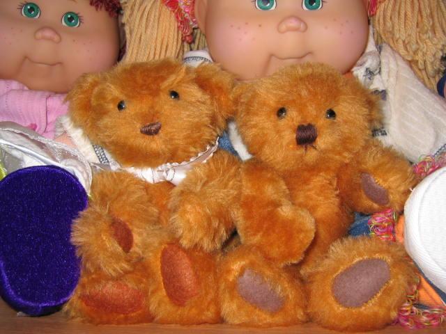first-bears-001.JPG