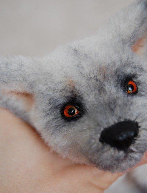 1424000305_fox_4.jpg