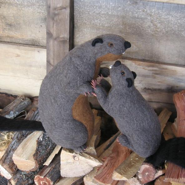 beavers2.jpg