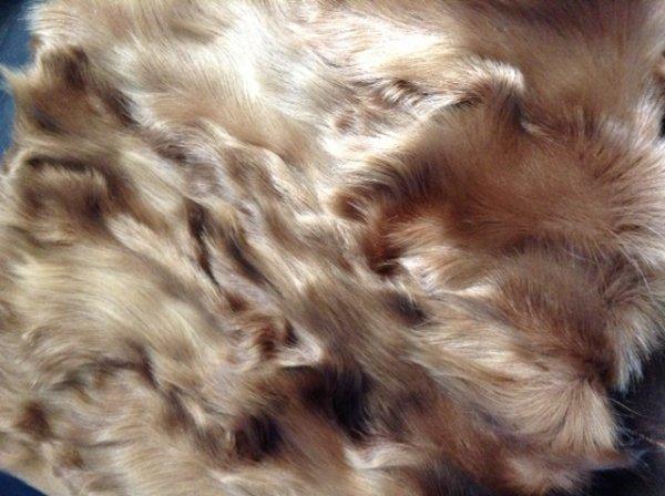 1366038956_goat_coat_fur.jpg