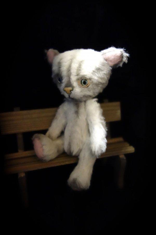 1392909991_cat12.jpg