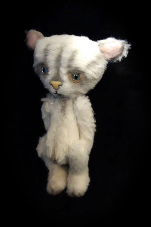 1392910026_cat13.jpg
