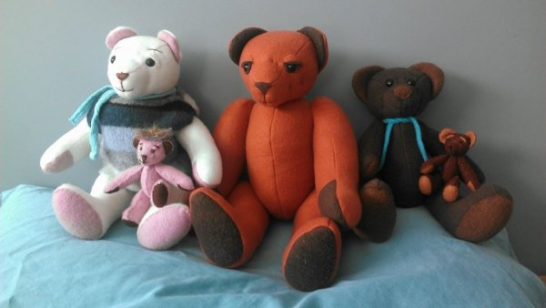1424630378_bear_family.jpg