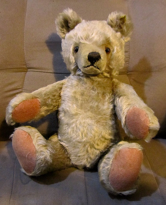 Steiff_Original_bear_from_1970s.jpg