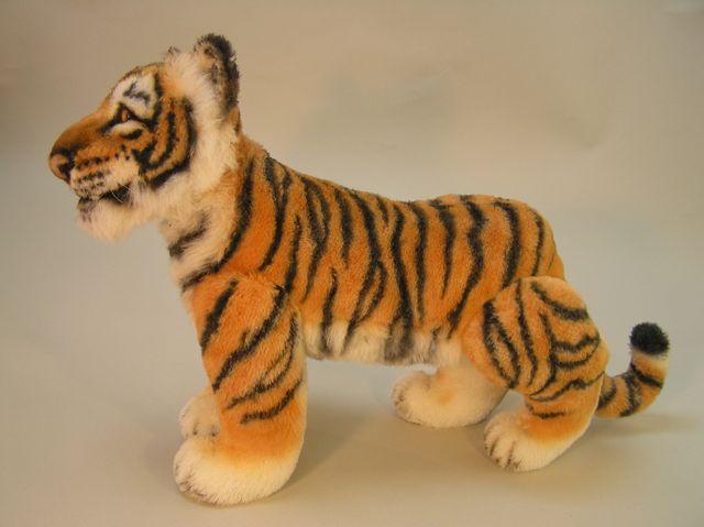 New-tiger-1.jpg