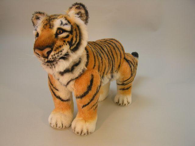 New-tiger-19.jpg
