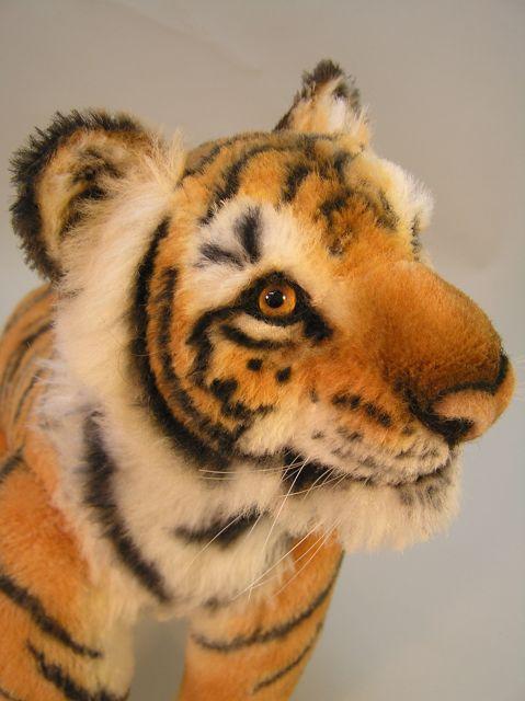 New-tiger-28.jpg