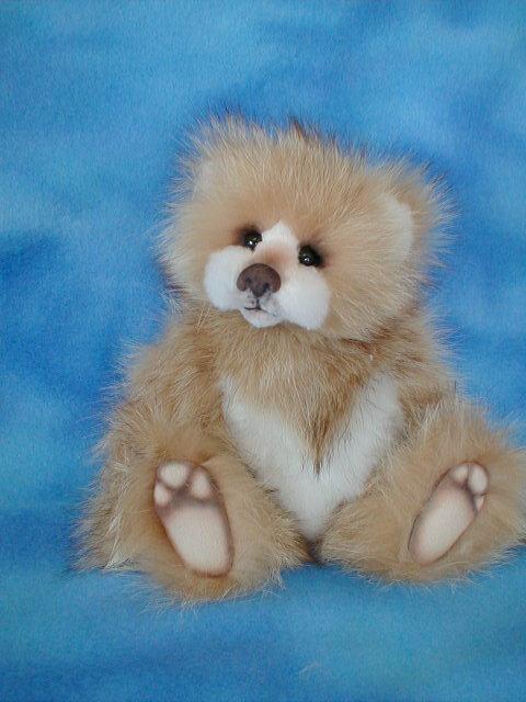 bears-2091.jpg