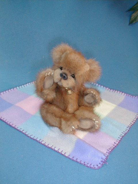 bears_2086.jpg