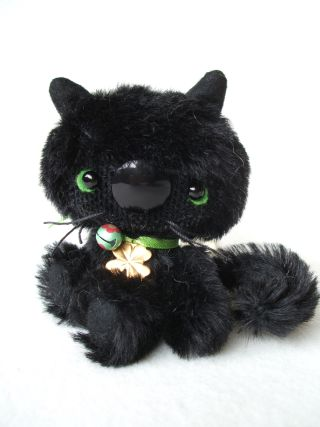 cat-006.jpg
